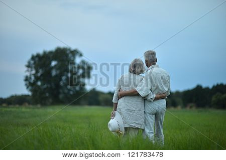 senior couple  in summer field