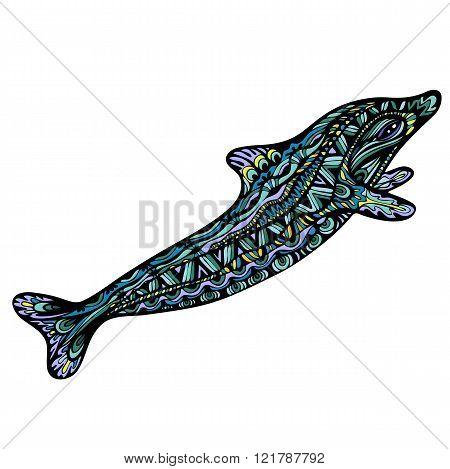 Fancy Dolphin