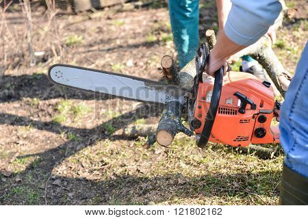 Lumberjack working with chainsaw cutting wood. Selective focus