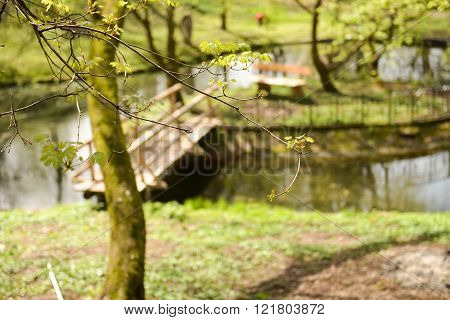 Beautiful Back Garden Of A Medieval Castle With Focus On The Branches Just Green