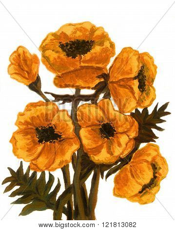 Hand painted picture oil painting orange poppies on white background vertical.