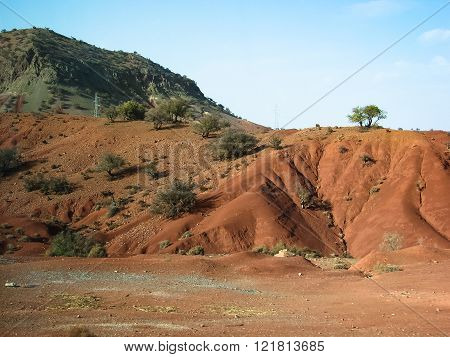 Classic Moroccan Landscape - Red Mountain And Argan Trees