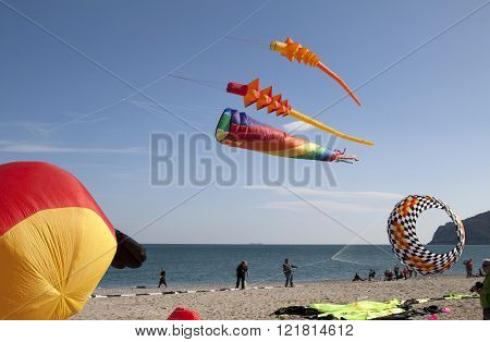 ITALY, LIGURIAN RIVIERA, SPOTORNO, MARCH 2016. Colored kites in a windy day in ligurian riviera italy