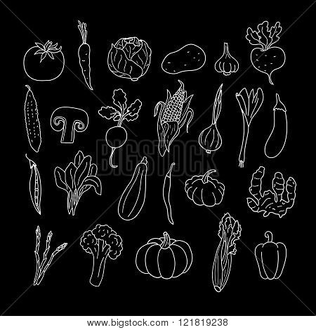 Set of hand drawn vegetables. Doodles, vector illustration. Isolated on a black background.