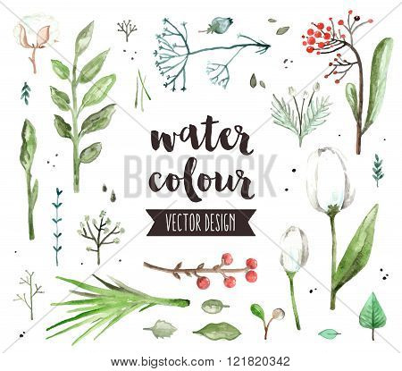 Floral Blossom Watercolor Vector Objects