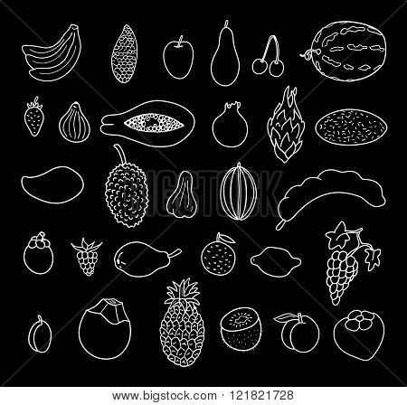 Tropical Fruits. Hand Drawn Collection, Vector Illustration