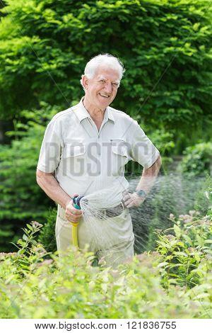 Watering Plants Using Hose