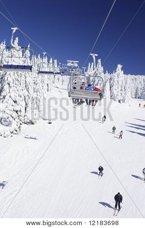 skiers enjoying the slopes
