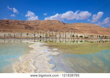 Path of evaporated salt. Shores of the Dead Sea in Israel. Along the shore with palm trees, which are reflected in the water