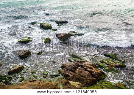Close-up of rocky shore with sea water and large rocks covered with algae. Rocky coastline with sea water.