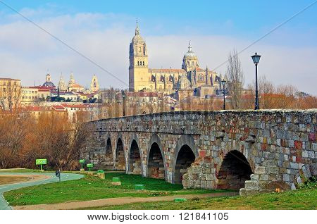 View of ancient bridge and cathedral of Salamanca Spain