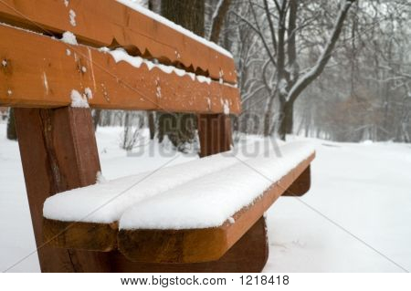 Bench In Winter Park