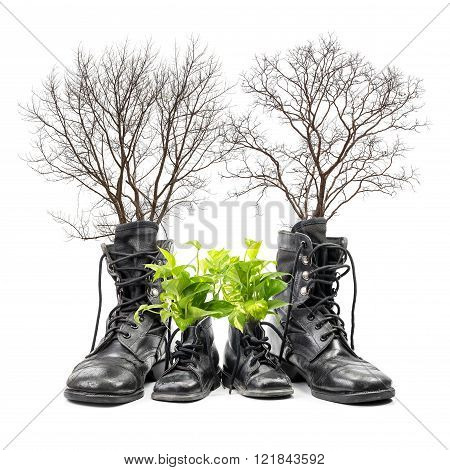 Concept of comparison the human age in the midst of adult and kid from combat boot and tree isolated on white