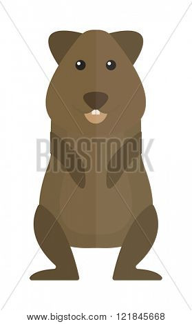 Hamster cartoon domestic animal fun flat hamster character. Cute happy small hamster. Cute standing brown hamster cartoon flat vector illustration.