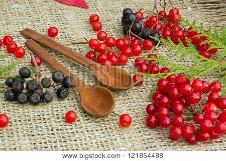 red berries of viburnum ,black ash and two wooden spoons