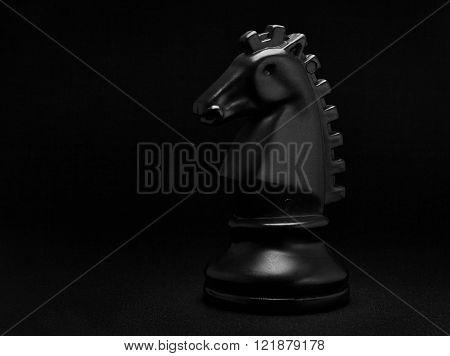 Chess. Black Knight on black background. Black Horse.