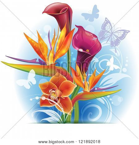 Bouquet of Strelitzia and Calla flowers