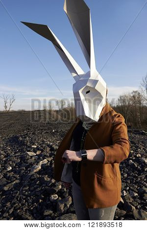 Easter Rabbit In Geometric Mask.