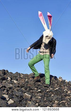 Rock Easter Rabbit In Geometric Mask.