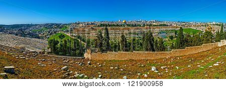 The slopes of the Mount of olive are famous for the ancient Jewish cemetery old and modern churches panoramic viewpoints and lush gardens Jerusalem Israel.