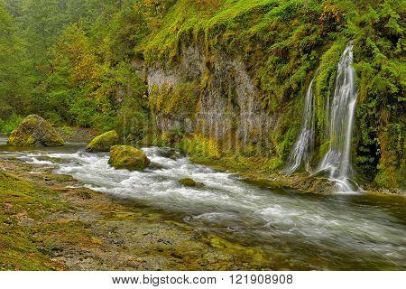 Beautiful Salmon Creek Falls surrounded by lush green vegetation.