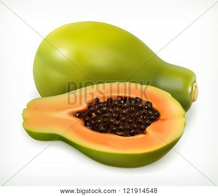 Papaya fruit. Vector icon