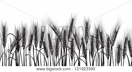 Ears of wheat black horizontal seamless pattern Vector illustration