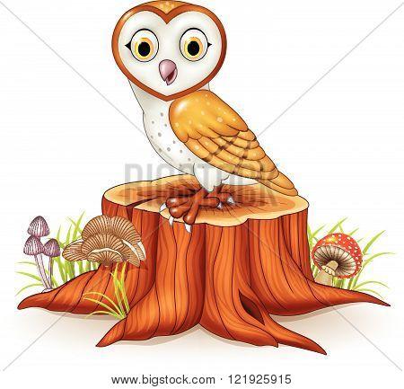 Vector illustration of Cute barn owl sitting on tree stump