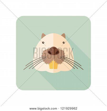 Otter beaver flat icon. Animal head vector symbol eps 10