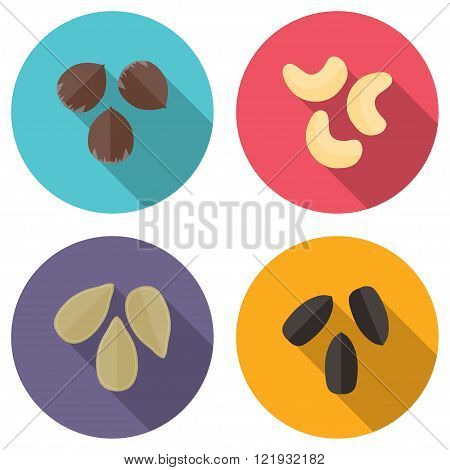 Nuts and seeds vector icons set. Modern flat design.