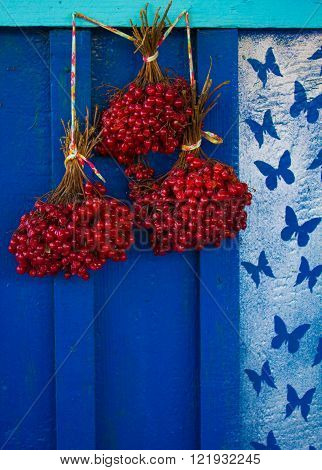 Red maple berry, viburnum pine, on a background of a wooden wall with butterflies.