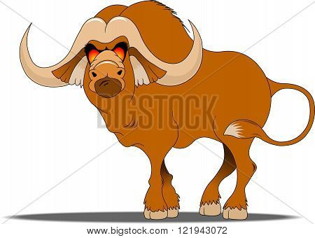 african cape buffalowild animal of africafront view picture isolated on white backgroundvector illustration
