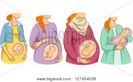 Illustration of a Chart Showing the Stages of Pregnancy