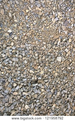 The path of gravel with dry branches ** Note: Visible grain at 100%, best at smaller sizes