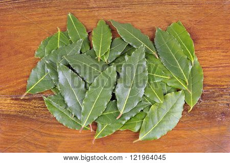 Whole fresh picked Bay leaves or Bay Laurel leaves used in cooking as an ingredient to flavor dishes.
