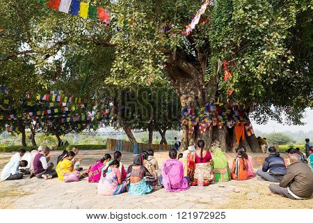 Pilgrims praying under Bodhi tree in Lumbini, Nepal