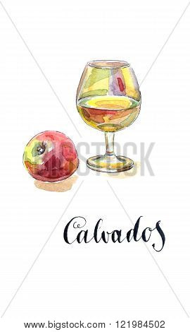 Glass of calvados with red apple watercolor hand drawn - Illustration