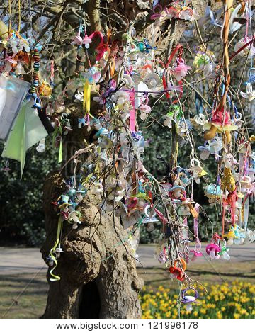 Pacifiers hanging on a Pacifier Tree. A tradition, where small children are encouraged to leave them behind, and stop using them by giving them to the special tree.