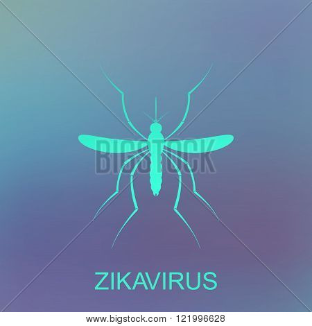 Zika mosquito vector. Virus alert. Aedes Aegypti isolated on blue background.