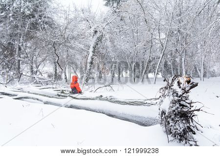 Child And Broke Down Tree Of Snow. Horizontal View Of Child Sitting Over The Trunk Of A Fallen Tree