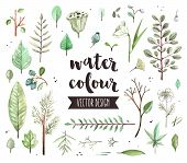 Plant Leaves Watercolor Vector Objects poster