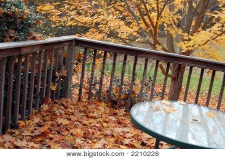 Leaf-Strewn Deck