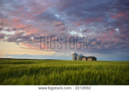 Summer Evening On The Prairie