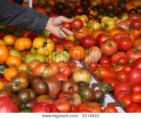 Shopping For Tomatoes 2