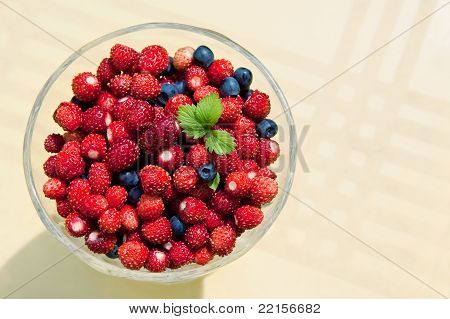 Fresh forest berries in glass cup