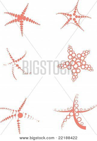 Starfish Vector Set