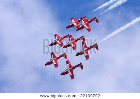 Canadian Forces Snowbirds