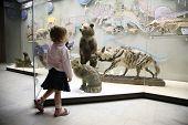 Постер, плакат: Маленькая девочка в музей естественной