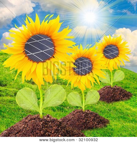 Solar panels on the sunflowers. Environmental concept. Pure energy metaphor.