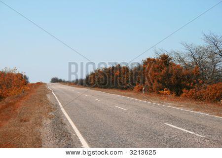 Dry Summer Landscape